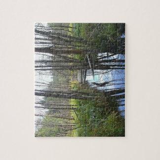 Marsh Puzzle