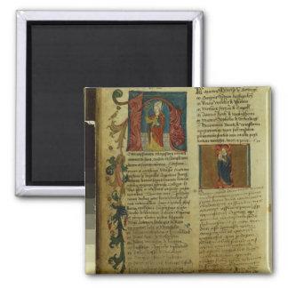 Martin Luther's Enrolment Magnet