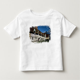 Mary Arden's House Toddler T-Shirt