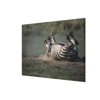 Masai Mara National Reserve, Kenya 2 Canvas Print