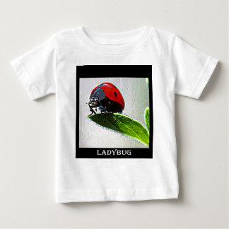 Massachusetts Ladybug Baby T-Shirt