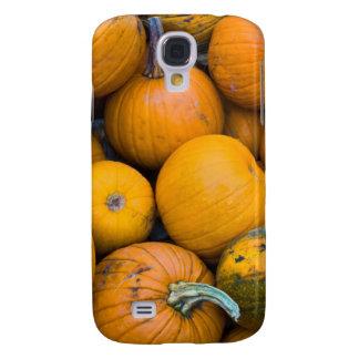 Massachusetts, Salisbury, pumpkins, autumn Galaxy S4 Case