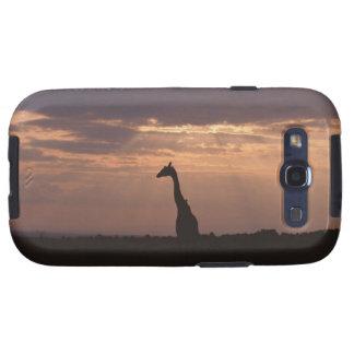 Massai Giraffe Galaxy SIII Cases