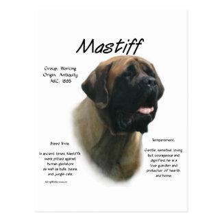 Mastiff (apricot) History Design Postcard