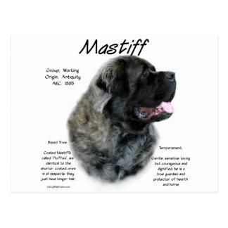 Mastiff (brindle fluff) History Design Postcard