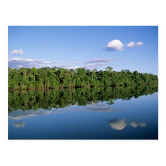 Mato Grosso State, Amazon, Brazil. Forested Postcard