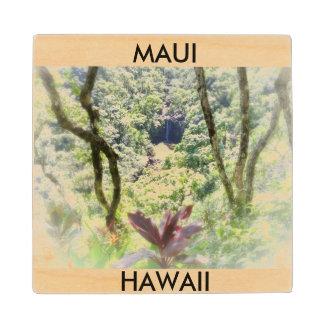 Maui, Hawaii Coaster