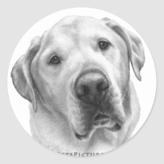 Maxwell, Lab-Pitbull Mix Classic Round Sticker