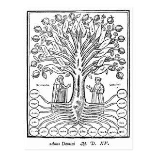 Medieval Tree of Sciences Postcards