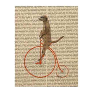 Meerkat on Orange Penny Farthing Wood Wall Art