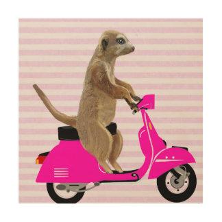 Meerkat on Pink Moped Wood Wall Art