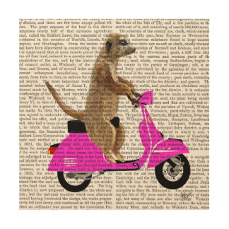 Meerkat on Pink Moped Wood Wall Decor