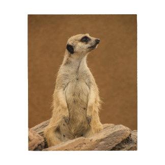 Meerkat Wood Wall Decor
