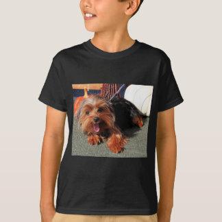 Meg - Yorkshire Terrier Photo-08 T-Shirt