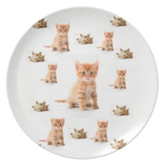 Melamine Plate Kitten