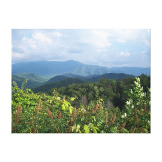 Memorable Mountain View Canvas Print