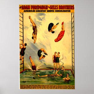 Men diving into Pool Vintage 1898 Circus Poster