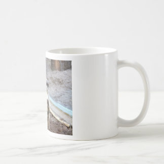 Mere Cats Basic White Mug