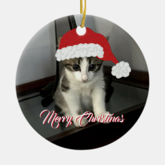 Merry Christmas Kitten Ornament