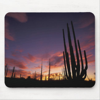 Mexico, Baja del Norte, Catavina Desert National 3 Mouse Pad