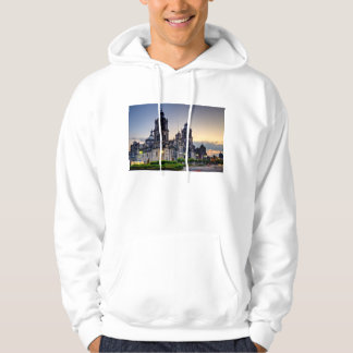 Mexico City Cathedral Hoodie