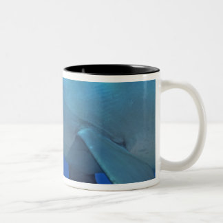 Mexico, Cozumel. Bottlenosed Dolphin, Tursiops 4 Two-Tone Coffee Mug