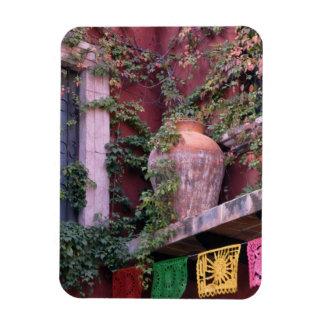 Mexico, San Miguel de Allende, Ivy, clay pot, Rectangular Photo Magnet