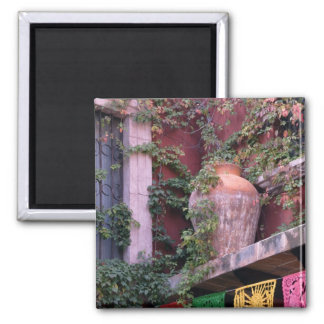 Mexico, San Miguel de Allende, Ivy, clay pot, Square Magnet