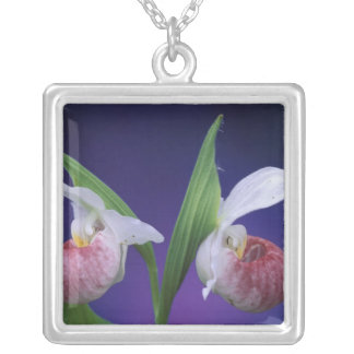 Michigan, Bruce Peninsula National Park. Showy Silver Plated Necklace
