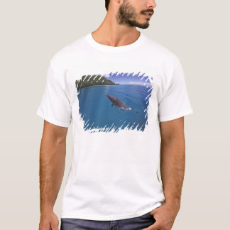 Micronesia, Palau Bottlenose dolphin Tursiops 2 T-Shirt