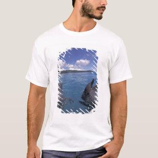 Micronesia, Palau Bottlenose dolphins T-Shirt