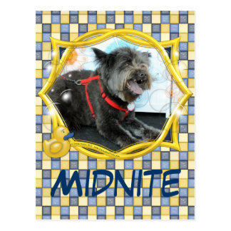 Midnite - Carin and Chow Mix Postcard