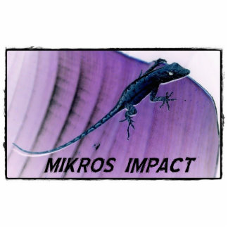 MIKROS IMPACT LIZARD PHOTO SCULPTURE MAGNET