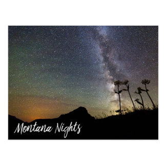 Milky Way Over Montana Mountains & Wildflowers Postcard