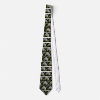 Mind of a Scoundrel Tie
