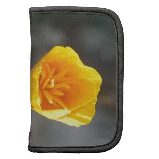 Mini Folio flower Folio Planner