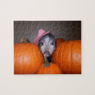 Mini Pig and Pumpkins Puzzle with Gift Box