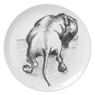 Miniature dachshund plate