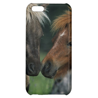 Miniature Horses Touching iPhone 5C Covers
