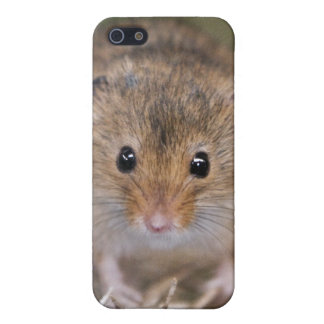 Minne iPhone 4 Speck Case iPhone 5 Cases