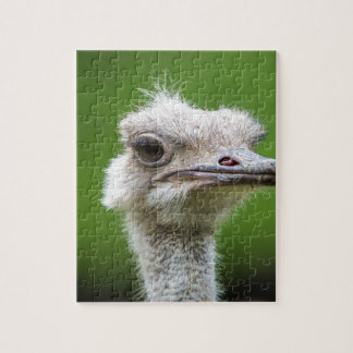Miscellaneous - Ostriches Patterns Eight Jigsaw Puzzle