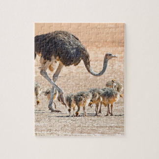 Miscellaneous - Ostriches Patterns Furnace Jigsaw Puzzle