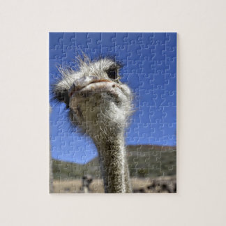 Miscellaneous - Ostriches Patterns Six Jigsaw Puzzle