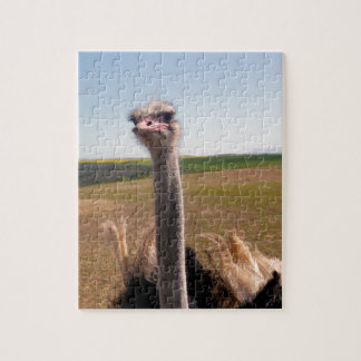 Miscellaneous - Ostriches Patterns Ten Jigsaw Puzzle