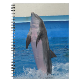 Mississippi, Florida Dolphin Notebook