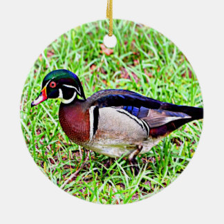 Mississippi Wood Duck Christmas Ornament