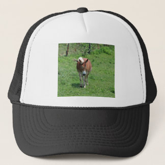 MIssouri Mule Trucker Hat