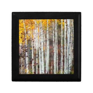 Misty Birch Forest Gift Box