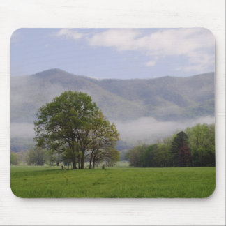 Misty meadow and Rich Mountain, Cades Cove, Mouse Pad