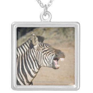 Mkuze Game Reserve, Kwa-Zulu Natal Province, Silver Plated Necklace